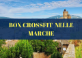 Box CrossFit nelle Marche - Italia | The SunWod